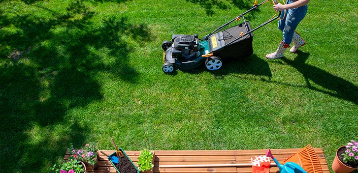 Affordable Professional Lawn Care In Staten Island Ny